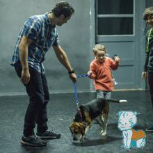 Stefan si tati o plimba pe Bailey - piesa de teatru