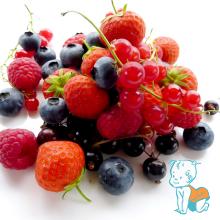 Fructele de padure si pregatirea pentru iarna