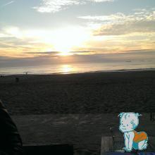 Plaja Haga