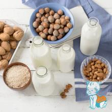 Lapte vegetal, lapte de caju, nuci, alune