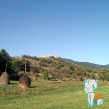 Cetatea Trascaului - Coltesti