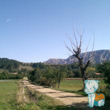 drumul spre Cetatea Trascaului - vedere spre Piatra Secuiului