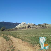 Cetatea Trascaului 1