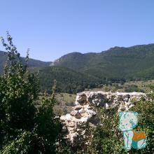 Vedere de la Cetatea Trascaului