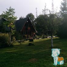 Cabana din Camping Floare de colt