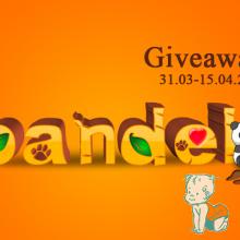 giveaway pandel.ro