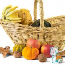 legume, fructe, nuci si alune