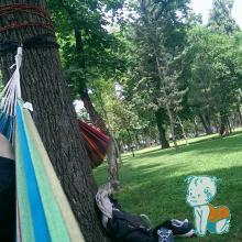 cu hamacele in Parcul Central Cluj-Napoca